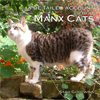 Image of Manx Cats book cover